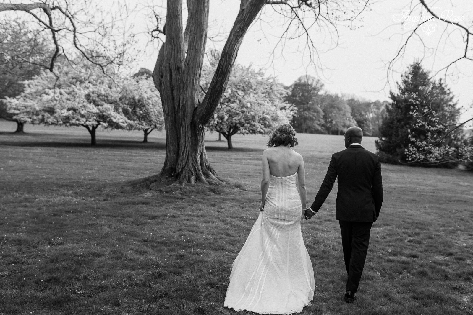 Blithewold Wedding photography Blithewold Wedding Wedding at Blithewold Bristol RI 391 Blithewold Wedding: Derick and Aislinn