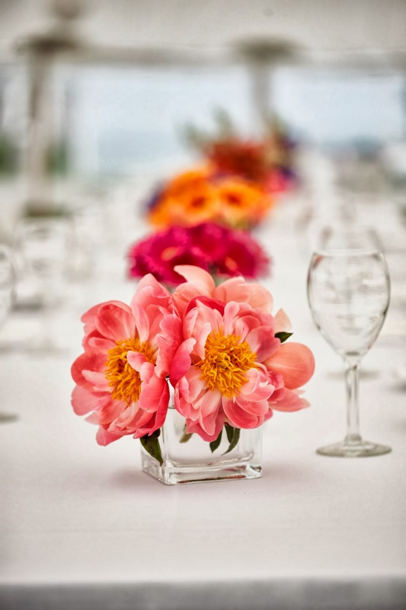 Brightly colored flowers from Sayles Livingston Design enhance a breathtaking,  seaside,   New England setting.