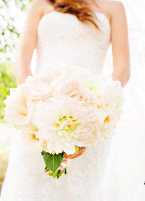 From The Adeline and Grace Photography Blog!!